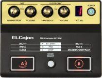 Roland EC-10M El Cajon Mic Processzor